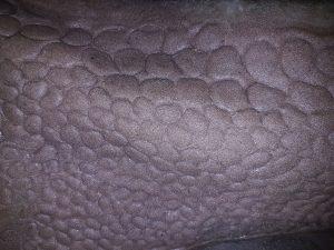 Neck texture, musclature, Incredible-Creations, Victoria Morris, Lee Nicholson, Dragon, Sculpture, Climbing, climbable